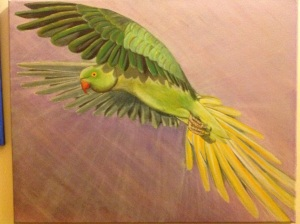 The escape parakeet oils