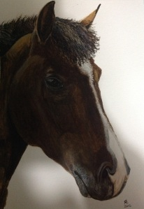 Woody new forest pony portrait watercolour