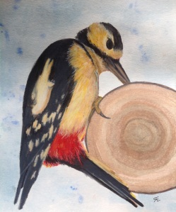 Red woodpecker watercolour and caran dache neocolor original picture photographed by my friend 'Jamie Russel' Mude photography