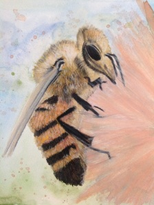 Study of a bee.... Not sur about this? Watercolour and wax pastels