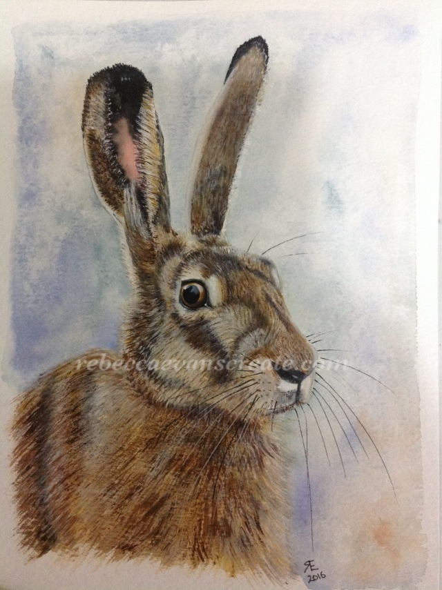Watercolour hare painting rebecca evans create art