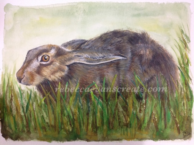 Hare in grass painting watercolour