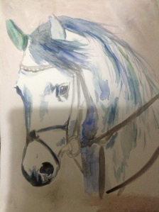 Watercolour horse Arab x