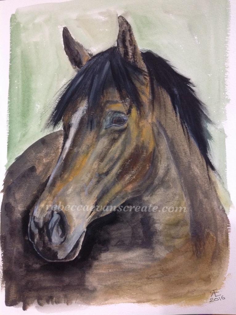Horse liquid pencil and watercolour painting rebecca evans create art