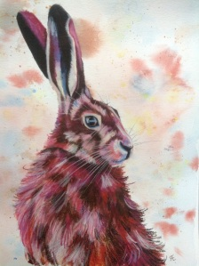 Female hare, watercolour and neocolor