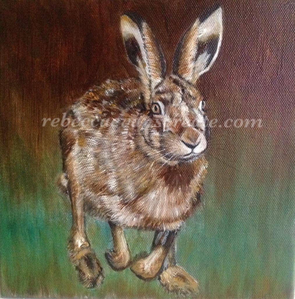 Hare running oil painting rebecca evans create art