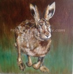 Hare running oil painting rebecca evans create art