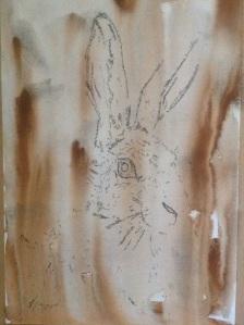 Rivulet technique Susan Avis Murphy Watercolour and pen Hare