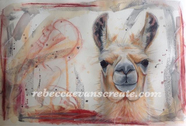 Llama watercolour and pastel painting rebecca evans create art