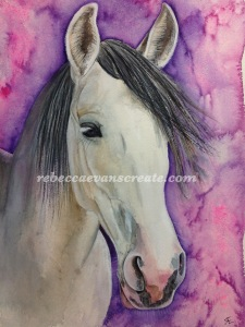 Watercolour horse Andalusian rebecca evans create art