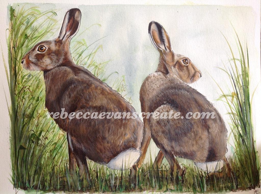 Watercolour hares, rebecca evans create art