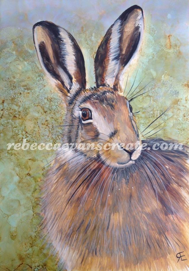 Yupo watercolour hare art