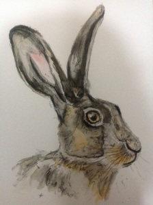 Watercolour hare, traditional tube watercolour paints and pen, to ink outlines