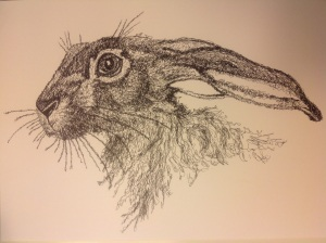 Scribble art hare black pen permanent 0.2