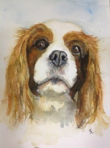 Sonny hospice PAT dog, watercolour King Charles spaniel