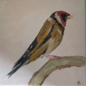 Goldfinch in oil 20x20 canvas nieve style Father's Day gift