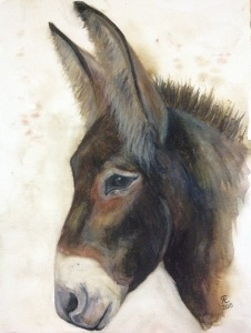 This is Oboe from the Donkey Whisperer Farm. Watercolour donkey painting https://www.facebook.com/Donkeywhisperer/photos/pb.335979886419765.-2207520000.1441182265./963335700350844/?type=3&theater