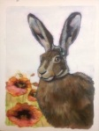 2) Watercolour and elegant writer hare with poppies,