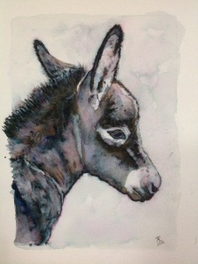Blue Moon Watercolour new born donkey foal