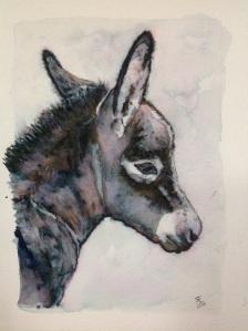 Blue Moon Watercolour new born donkey foal