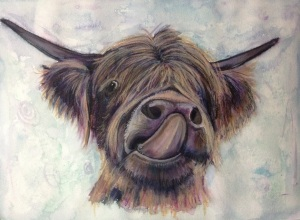 Liptastic - Highland cow in watercolour and caran dache neocolor