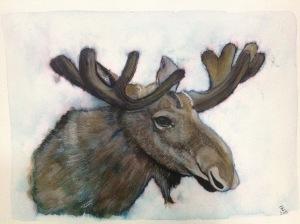 Moose watercolour portrait