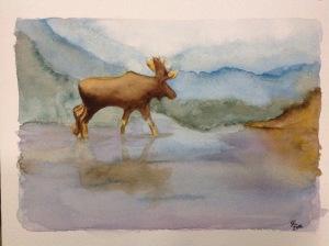 Moose watercolour sketch