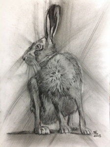 'Watch It' charcoal hare on mixed media paper- Daler Rowney