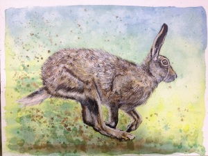 'lyric' watercolour hare