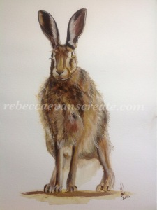 'Now you see me'  Watercolour brown hare