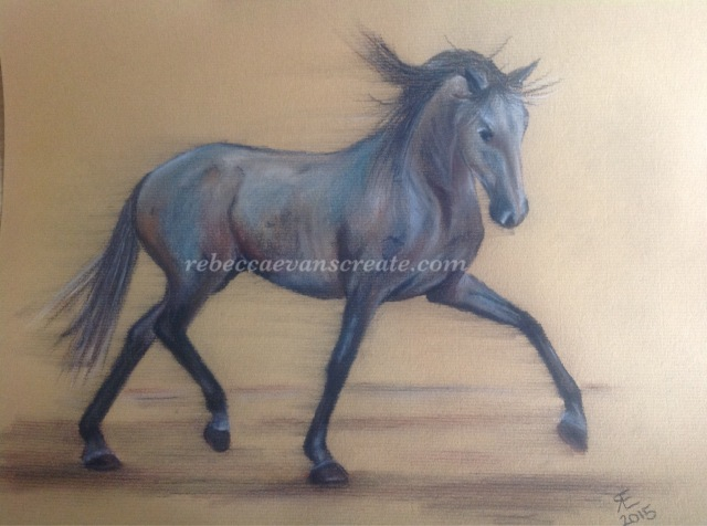 'liberdade' charcoal/derwent tinted charcoal, Lusitano horse