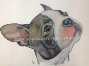 Bull terrier watercolour painting