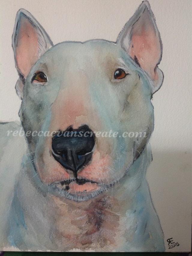 Surprise Presart Watercolour English Bull Terrier RebeccaEvans - Bull terrier art