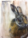 Hare watercolour rebecca evans create art