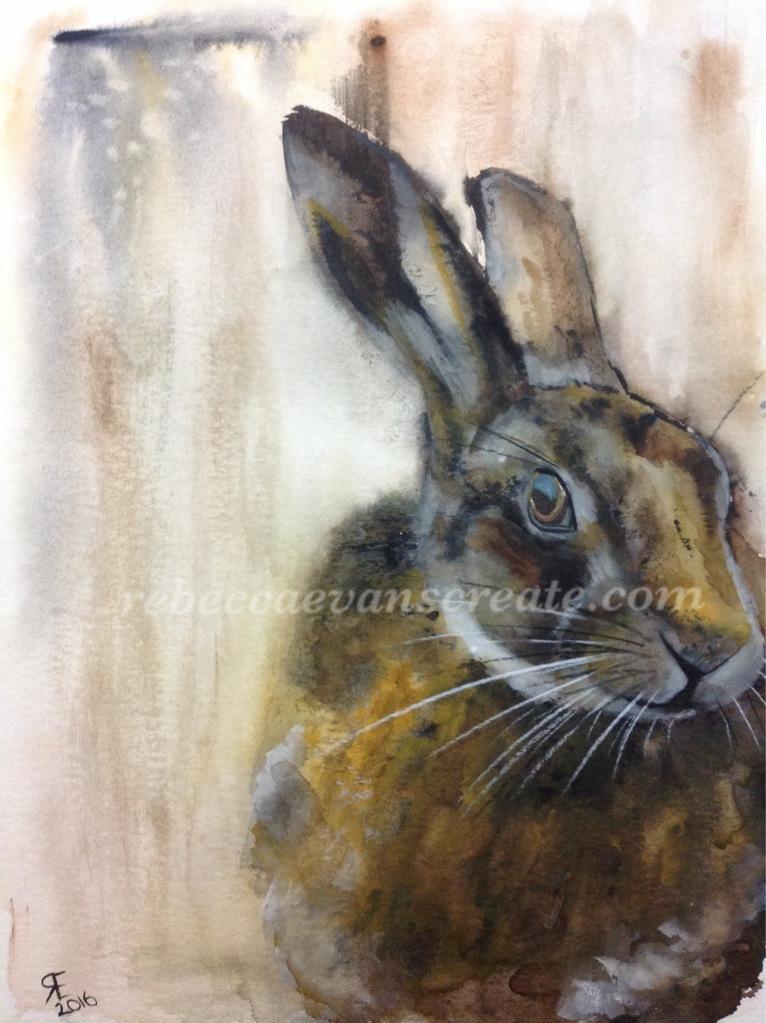 Hare watercolour rebecca evans create art