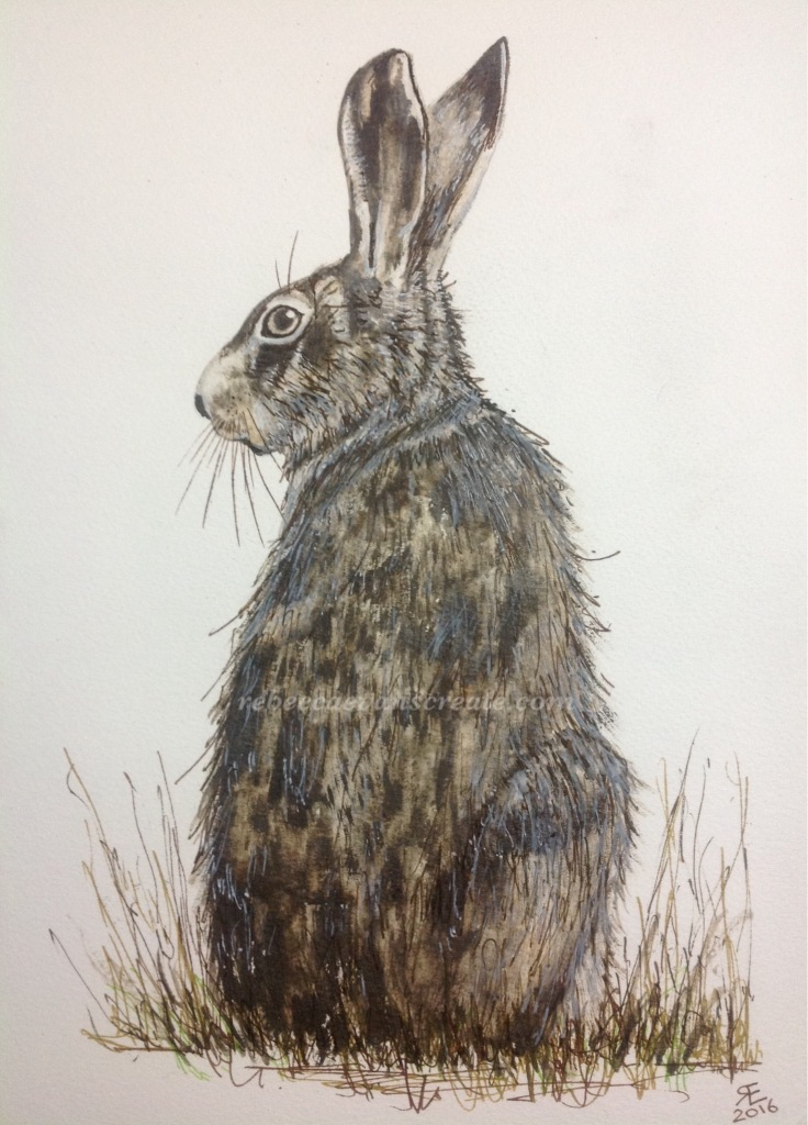Liquid pencil hare and liquid acrylic painting