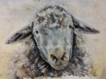 Sheep watercolour painting rebecca evans create art