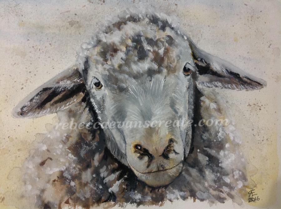 Sheep watercolour painting rebecca evans create art