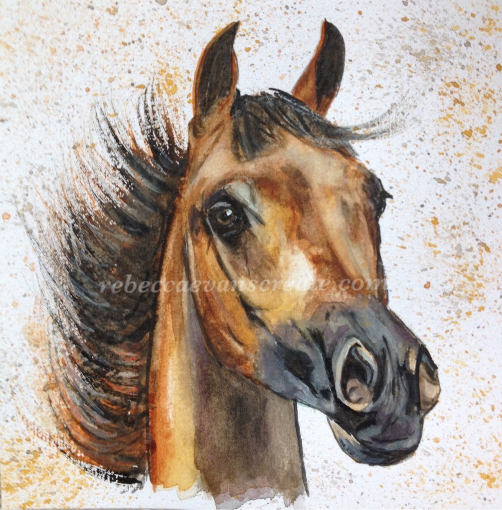 Horse watercolour painting for ms trust rebecca evans create art