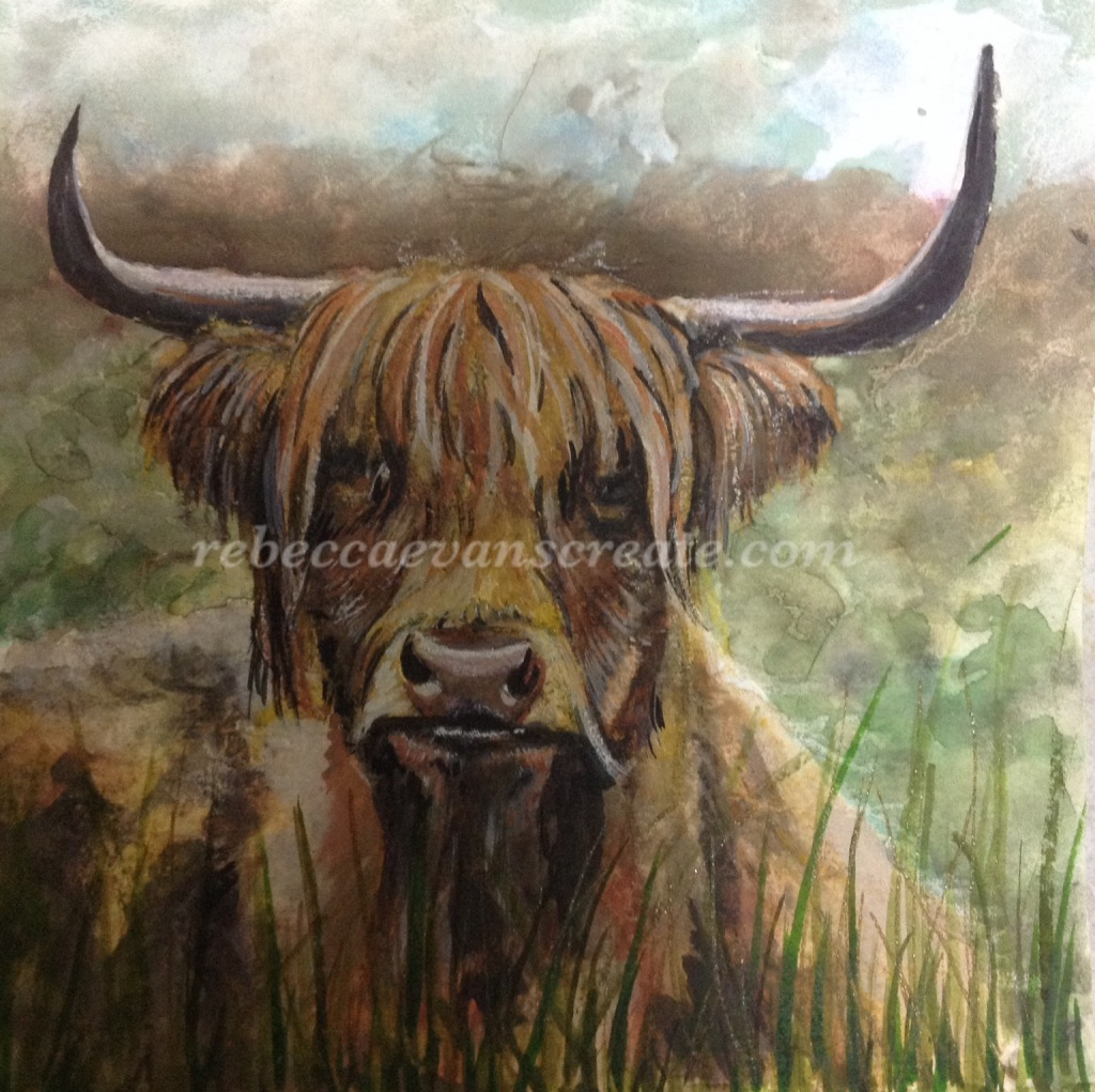 Otis highland cow painting ms trust rebecca evans create art