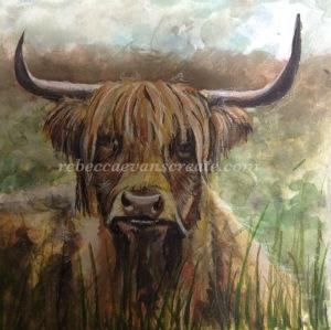 Otis highland cow painting ms trust rebecca evans create art