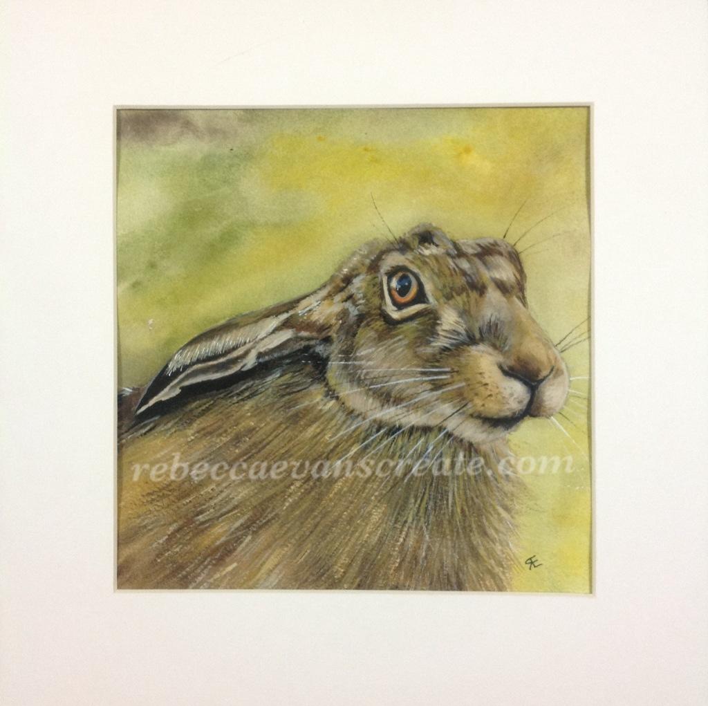 Watercolour hare painting rebecca evans create art