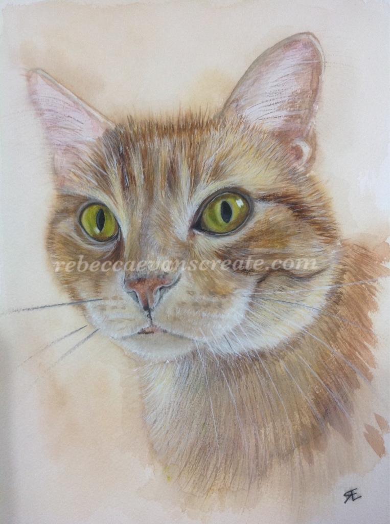 Watercolour ginger cat painting rebecca evans create art