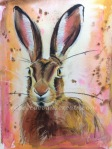 Hare painting watercolour and pastel rebecca evans create art