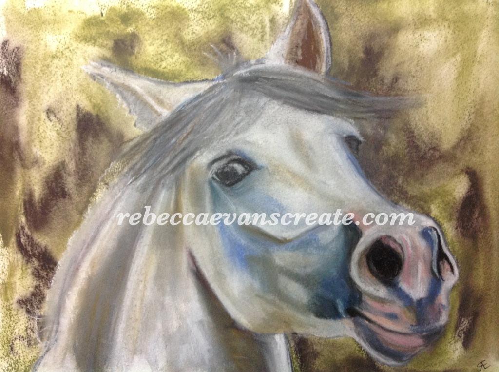 'What me' Artgraf and pastel horse A3 Rebecca evans create art