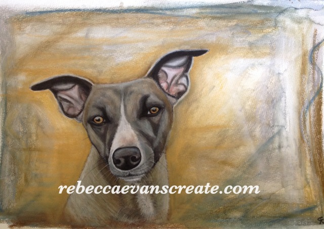 Rebecca evans create art 'Mysterial' watercolour and pastel dog.