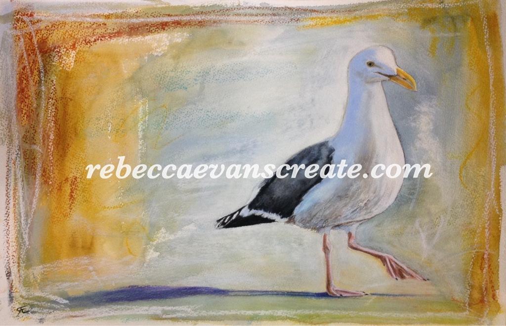Rebecca evans create art 'Mr Fisher' watercolour and pastel seagull