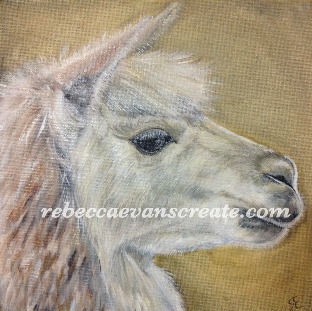 'Llama' oil painting 20cmx20cm