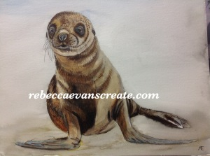 'Simon the seal' ink and watercolour #naturedoodlewash