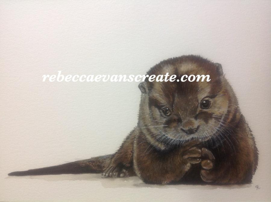 'Otis the otter' rebecca evans create art watercolour #naturedoodlewash